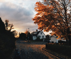 autumn, awesome, and beautiful image
