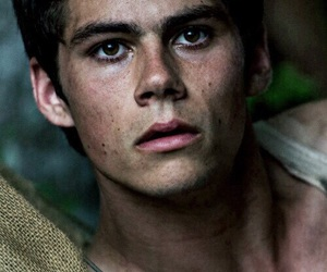 the maze runner, teen wolf, and dylan o'brien image