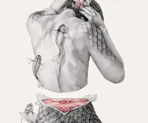 Image by Mitzel