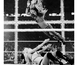 wrestling, wwe raw, and hell in a cell image