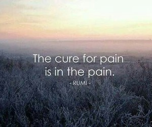 pain, Rumi, and life image