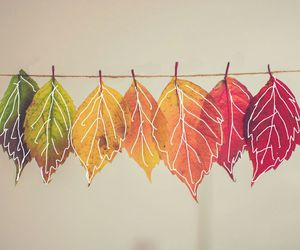 autumn, leaves, and doodle image