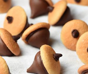 acorns, chocolate chips, and fall image