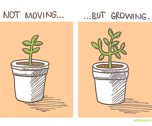 plants and growing image