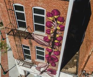 arte, color, and graffiti image