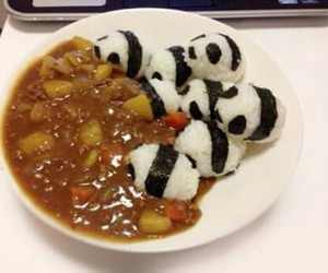 panda, food, and curry image