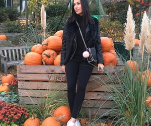 fall, Halloween, and happy image