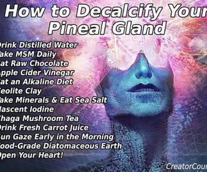 medicine, third eye, and pineal gland image