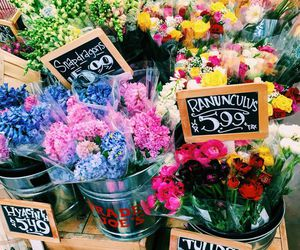 flowers and traderjoes image