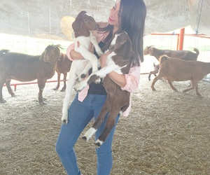 baby, fun, and goat image
