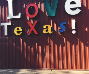 bbq, country, and Texas image