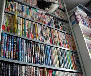 cat, manga, and book image