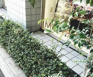 green, tokyo, and 街 image