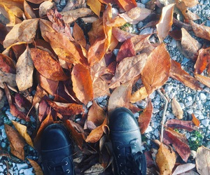 boots, fall, and combat boots image