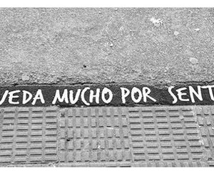 frases, love, and sentimientos image