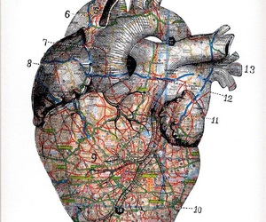 heart, art, and map image