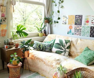 cactus, decoration, and green image