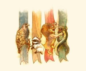 harry potter, hogwarts, and gryffindor image