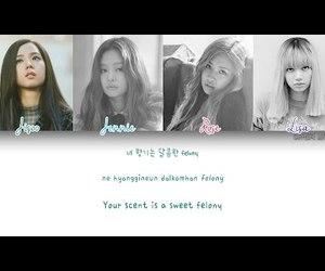 kpop, lisa, and jisoo image