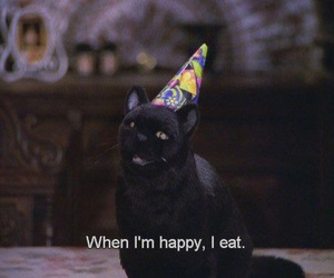 cat, eat, and happy image
