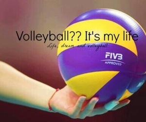 volleyball, ball, and life image