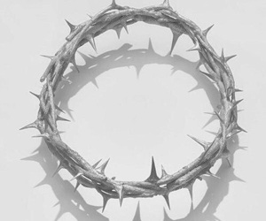 thorns and crown of thorns image
