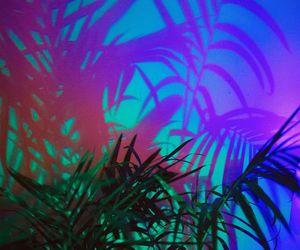 neon, aesthetic, and plants image