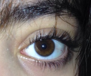brown, brown eye, and eye image