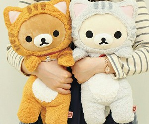 rilakkuma, kawaii, and cat image