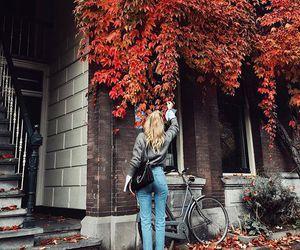 autumn, fashion, and inspiration image