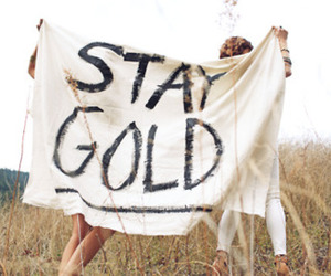 stay gold image