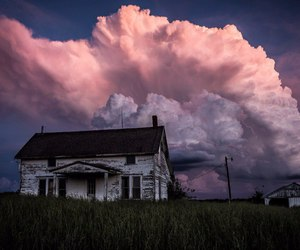 house, nature, and pink image