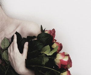 rose, flowers, and pale image