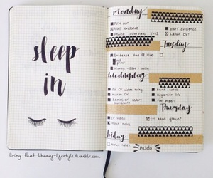 notes, organised, and pretty image