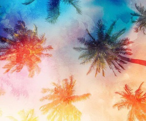 wallpaper, palm trees, and summer image