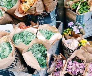 bunches, gothenburg, and flowers image