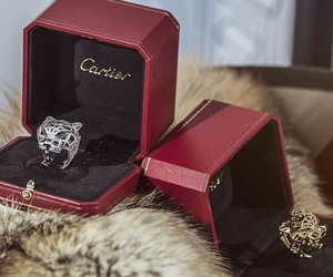 beauty, cartier, and classy image