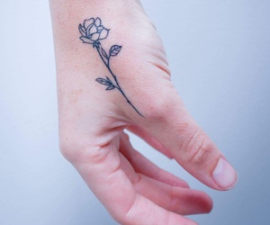 flower, hand, and rose image
