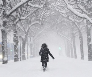 girl, white, and winter image