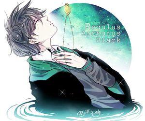 regulus black image
