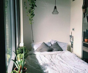 bedroom, plants, and room image