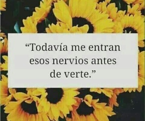 love, frases, and nervios image