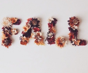 fall, autumn, and flowers image