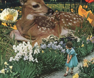 Collage, art, and deer image