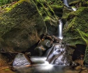 nature, natureza, and peace image