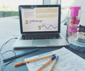 college, studying, and student life image