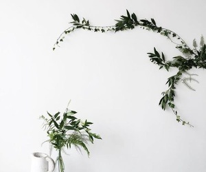white, green, and plants image