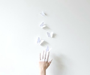 butterflies, simplicity, and cute image