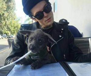 the neighbourhood, jesse rutherford, and dog image