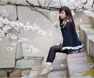 beautiful, foki, and cherry blossom image